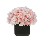 House of Silk Flowers Artificial Hydrangea in Small Black Cube Ceramic; Baby Pink