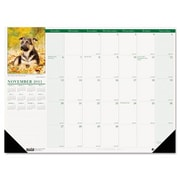 House of Doolittle 1996 Puppies Photographic Monthly Desk Pad Calendar- 18.5 x 13 (AZHOUS1996)