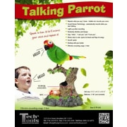 Princess International Inc.  Talking Parrot (PRIN070)
