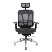 Thornton's Office Supplies ErgoExec High-Back Mesh Executive Office Chair