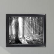 MCSIndustries Premium Wide Scoop Picture Frame; 16'' x 20''