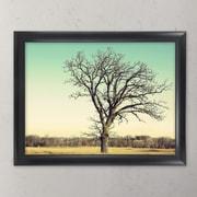 MCSIndustries Premium Wide Scoop Picture Frame; 18'' x 24''