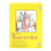 Strathmore 300 Series Watercolor Paper 11 In. X 15 In. Pad Of 12 Tape Bound [Pack Of 2] (2PK-360-111-1)