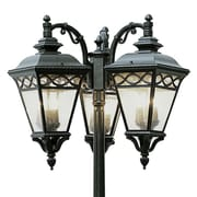 TransGlobe Lighting Outdoor 9 Light 80.75'' Post Light; Black