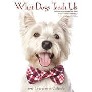 "Willow Creek Press 2017 What Dogs Teach Us Engagement Calendar 6.5""H x 8.5""W  (43340)"