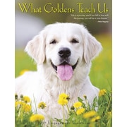 "Willow Creek Press 2017 What Goldens Teach Us Engagement Calendar 6.5""H x 8.5""W  (43296)"