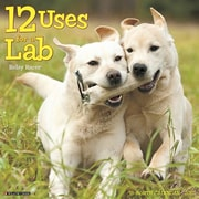 "Willow Creek Press 2017 12 Uses for a Lab Wall Calendar 12""H x 12""W (40035)"