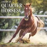 """Willow Creek Press 2017 American Quarter Horses Wall Calendar 12""""H x 12""""W (43449)"""