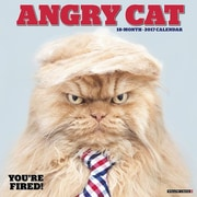 "Willow Creek Press 2017 Angry Cat Wall Calendar 12""H x 12""W (40097)"