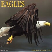 "Willow Creek Press 2017 Eagles Wall Calendar 12""H x 12""W (40851)"