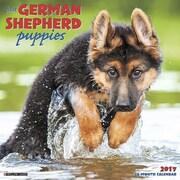 "Willow Creek Press 2017 Just German Shepherd Puppies Wall Calendar 12""H x 12""W (41001)"