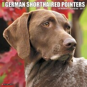 """Willow Creek Press 2017 Just German Shorthaired Pointers Wall Calendar 12""""H x 12""""W (41025)"""