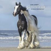 "Willow Creek Press 2017 Gypsy Vanner Horse Wall Calendar 12""H x 12""W (41124)"