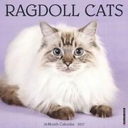 """Willow Creek Press 2017 Ragdoll Cats Wall Calendar 12""""H x 12""""W (41780)"""