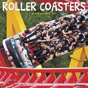 "Willow Creek Press 2017 Roller Coasters Wall Calendar 12""H x 12""W (43036)"