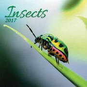 TURNER PHOTO Insects 2017 Photo Wall Calendar (17998940028)