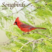 TURNER PHOTO Songbirds 2017 Photo Wall Calendar (17998940052)