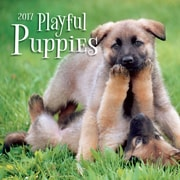 TURNER PHOTO Playful Puppies 2017 Photo Mini Wall Calendar (17998950017)