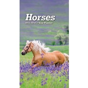 TURNER PHOTO Horses 2017 Photo 2-Year Planner (17998960005)