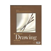 Strathmore 400 Series Drawing Paper Pad 11 In. X 14 In. [Pack Of 3] (3PK-400-5-1)