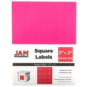 "JAM Paper® Square Address Labels, 2"" x 2"", Neon Pink, 120/Pack (367831075)"