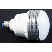 Zuma Light Bulb 30W 110V LED Light Bulb (Z-LED30)