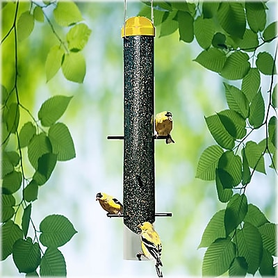 Perky Pet Finch Thistle Tube Bird Feeder (WYF078276316923) photo