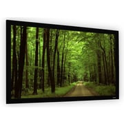 Elune Vision Black Fixed Frame Projection Screen; 92'' Diagonal (45'' x 80'')