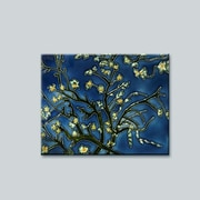 Tori Home 'Branches of An Almond Tree' by Vincent Van Gogh Wall Art