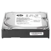"HP® 793667-B21 6TB SATA/600 3 1/2"" Internal Hard Drive"