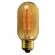 Tightrope 30 W E26 Light Bulb