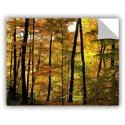 ArtWall Chuck Burdick 'Fall Colors' Painting Print Wall Mural; 14'' H x 18'' W x 0.1'' D