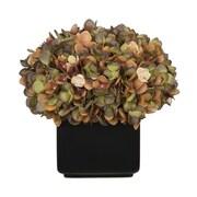 House of Silk Flowers Hydrangea Arrangement in Large Black Cube Ceramic; Coffee/Sage