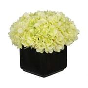 House of Silk Flowers Hydrangea Arrangement in Large Black Cube Ceramic; Green