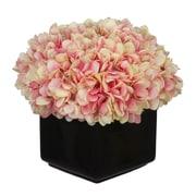 House of Silk Flowers Hydrangea Arrangement in Large Black Cube Ceramic; Pink/Cream