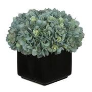 House of Silk Flowers Hydrangea Arrangement in Large Black Cube Ceramic; Teal