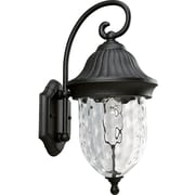 Progress Lighting Coventry 1 Light Outdoor Sconce; Black