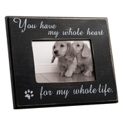 Lsc Accessories Inc. Cat or Dog Wall Picture Frame