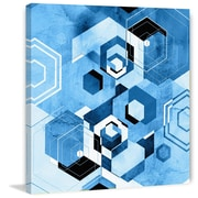 Marmont Hill ''Hexagon Display'' Graphic Art on Wrapped Canvas; 18'' H x 18'' W x 1.5'' D