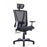 Ergomax Office Mesh Task Chair with Arms; Black