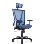 Ergomax Office Mesh Task Chair with Arms; Blue