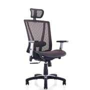 Ergomax Office Mesh Task Chair with Arms; Brown