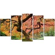 DesignArt Metal 'Autumn Maple Tree' Photographic Print