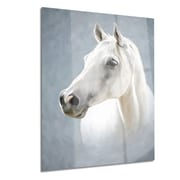 DesignArt Metal 'A White Horse Alone' Graphic Art; 12'' H x 28'' W
