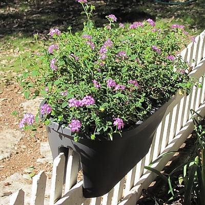 Exaco Resin Rail Planter; Anthracite WYF078276333136