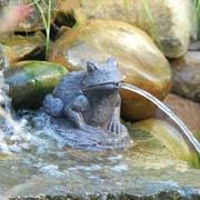 Pond Boss Frog Spitter