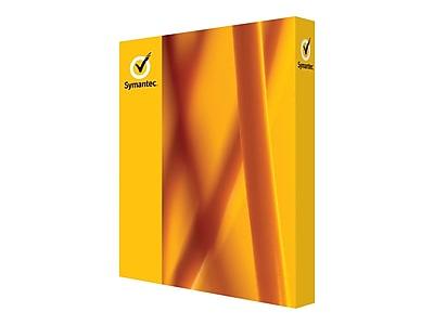 Symantec Norton 21353868 1-User Security Standard v3.0 Software