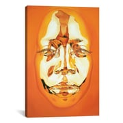 iCanvas ''Diovadiova Chrome'' Joyce II by Kip Omolade Graphic Art on Wrapped Canvas; 40'' H x 26'' W