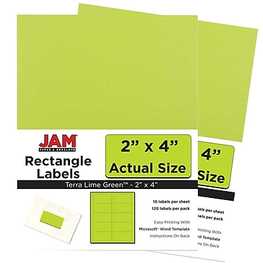 JAM Paper® Mailing Address Labels, 2 x 4, AstroBrights® Terra Lime Green, 2 packs of 120 (302724405g)