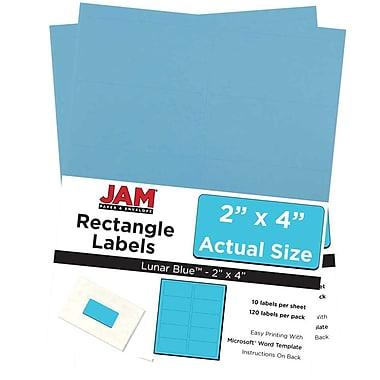 JAM Paper® Mailing Address Labels, 2 x 4, AstroBrights® Lunar Blue, 2 packs of 120 (302725768g)